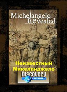 Неизвестный Микеланджело