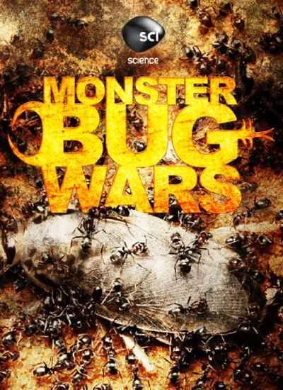 Войны жуков-гигантов онлайн