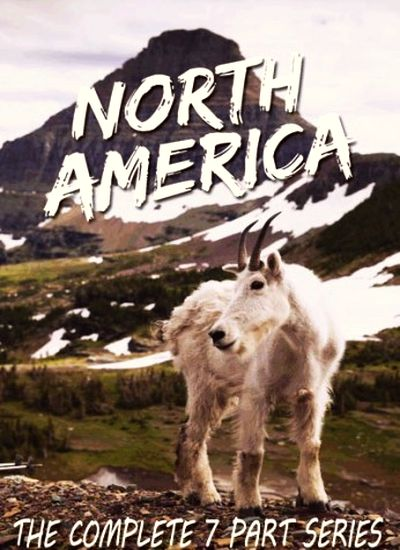 Фильмы Discovery Северная Америка